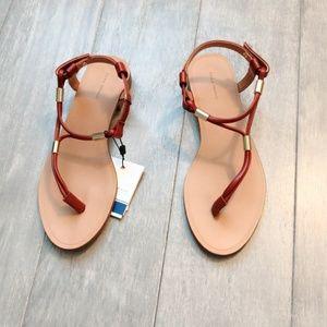 ZARA Flat Sandals :Brown, US 6/EUR 36